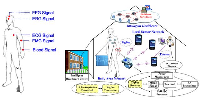 body_sensor_network
